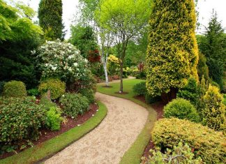 Green Landscaping