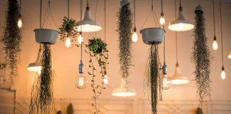 Light Business Environment