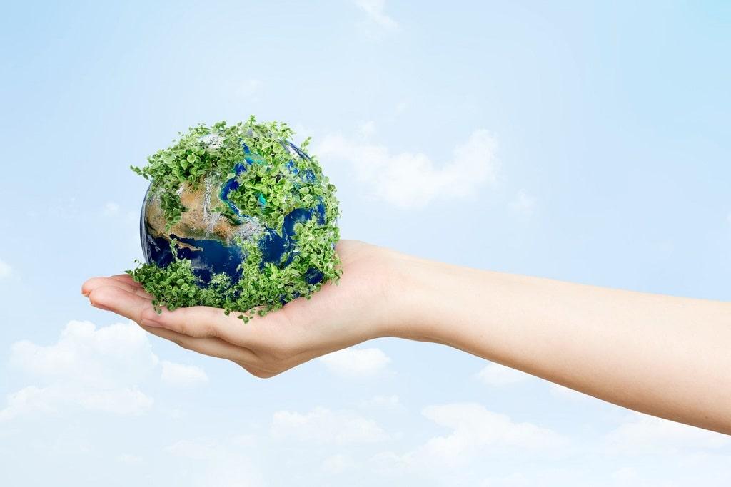 Boys' Sports Shoes