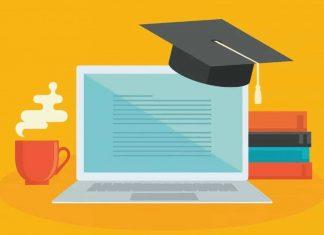 Top Diploma Courses