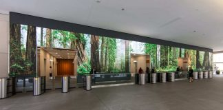 digital wall designs