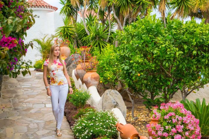 How To Maintain Garden in Summer